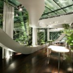 Beautifully Indoor Garden in office
