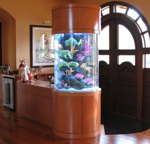 Beautiful Aquarium Design At Entrance Of Living Room