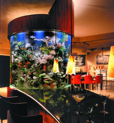 Beautiful Aquarium Design Besides Dining Table