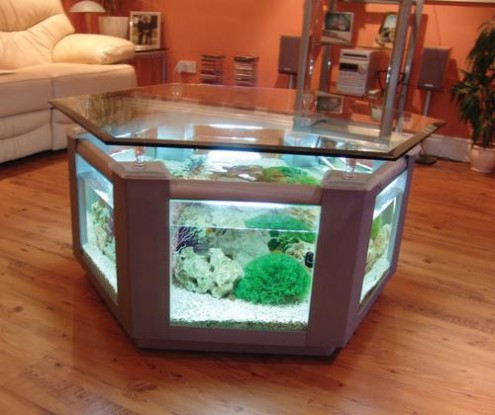 Beautiful Aquarium Design For Centre Coffee Table Of Living Room