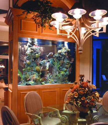 Beautiful Aquarium Design For The Living Room