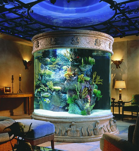 Beautiful Aquarium Design In The Centre Of Living Room