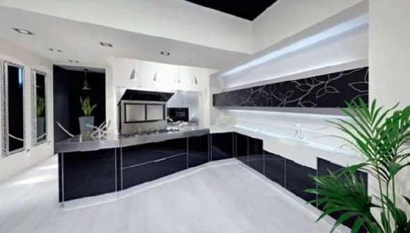 Natural black and white kitchen design ideas
