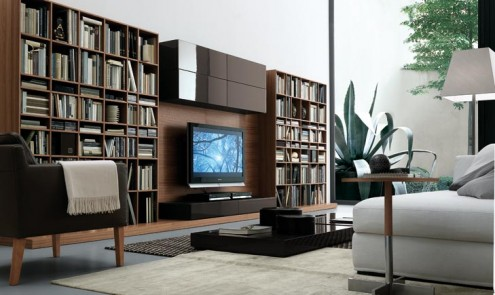 Regolo Stylish And Lavish With Library Wall Unit