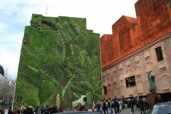 Living wall design created by Patrick Blanc, the CaixaForum museum, Madrid, Spain-vertical garden