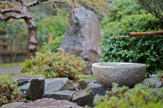 The Japanese style of garden