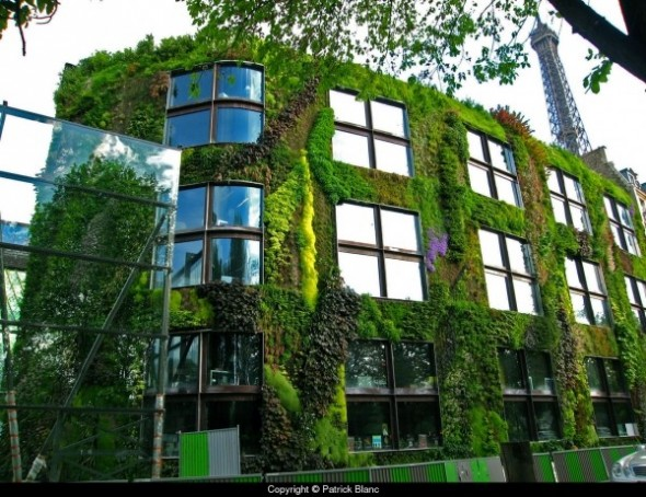 Vertical garden of the Musee du Quai Branly in Paris, France, created by Patrick Blanc