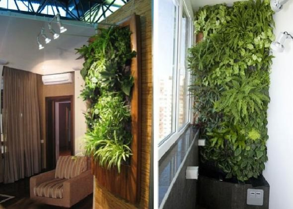 nice green house with vertical gardens