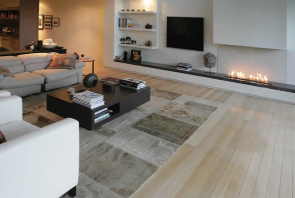 Contemporary Central Fireplaces by EcoSmart Interior