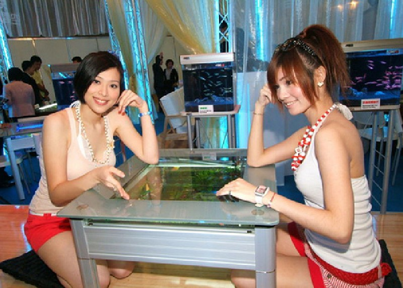 Beautiful Girls Aquarium