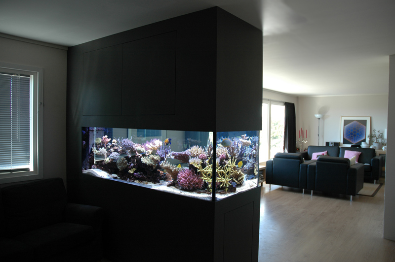 Partition room with Aquarium Design