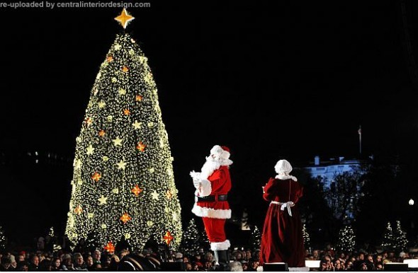 National Christmas Tree in Washington-decorating Christmas