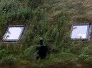 Grass Roofs Norway