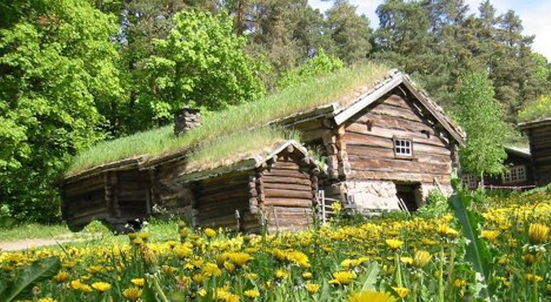 Grass Roofs Scandinavian