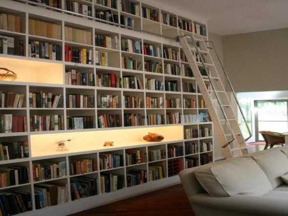 Well Designed Home Library