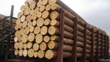 Building Materials Sourced Nature